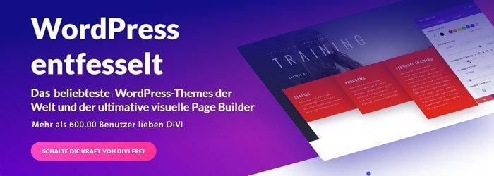 DIVI - Das WordPress-Themes dieser Webseite
